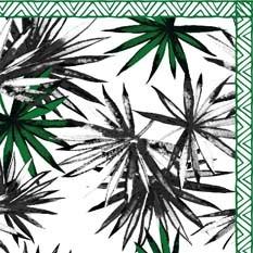 Tasmanie Noir Blanc & Vert