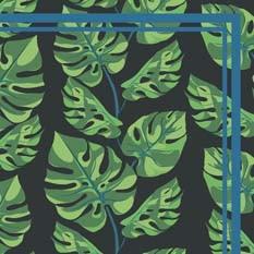 Philodendron foncé
