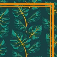 Philodendron orange & vert